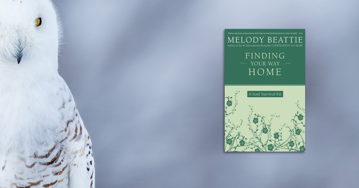 Cover of Finding Your Way Home by Melody Beattie beside a white owl.