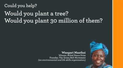 Would you plant a tree? Would you plant 30 million trees?