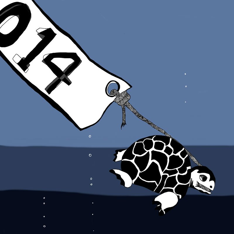 Turtle dives down into the ocean with 2014.