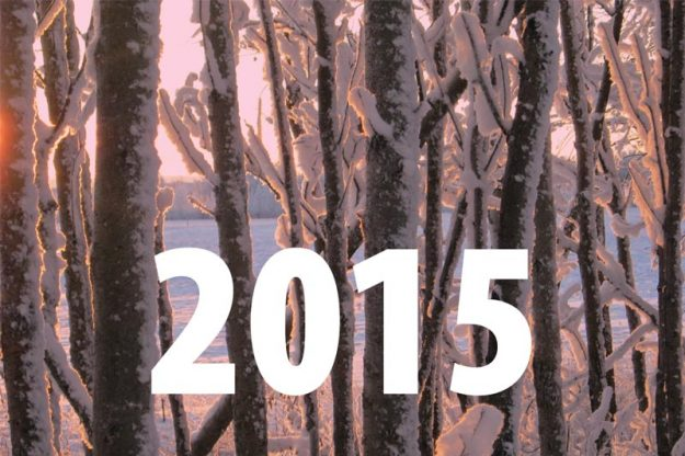 2015: the sun sets amidst a forest of snow and light