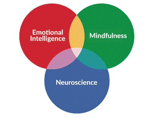 Emotional intelligence meets mindfulness meets neuroscience in a Venn diagram