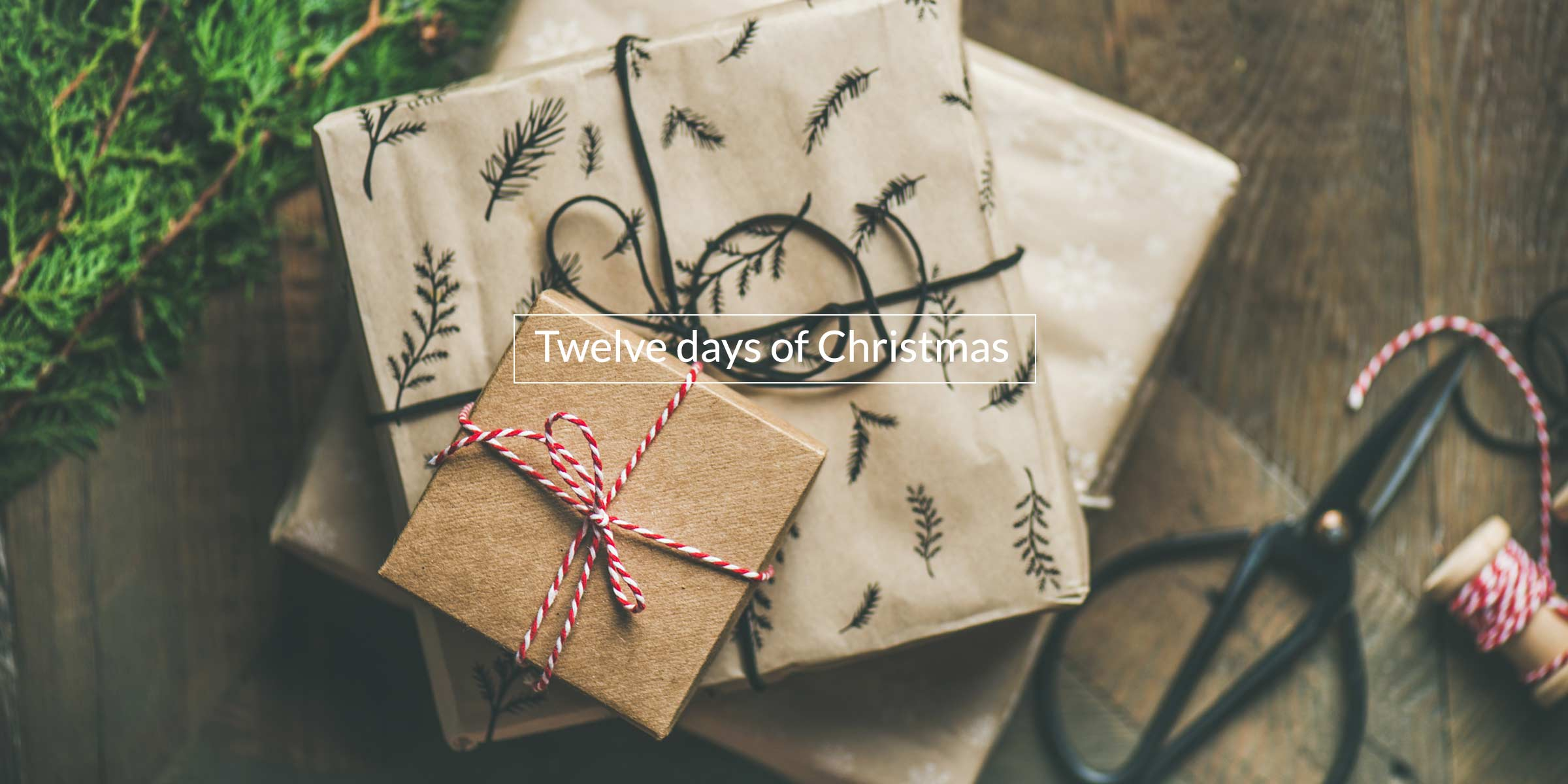 Twelve days of Christmas; twelve days of emotional intelligence